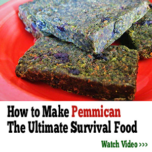 how to make pemmican the lost ways